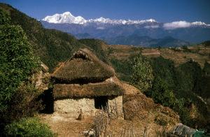 Helambu Trekking: Best for Short Trek
